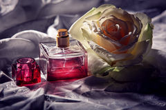 Parfume bottle with rose. Parfume bottle with white rose royalty free stock images