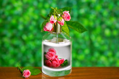 Parfume bottles with rose Royalty Free Stock Photos