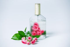 Parfume bottles with rose. On white stock photography