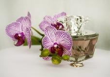 parfumerie Photos libres de droits