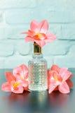 Parfumes de las señoras con las flores Foto de archivo libre de regalías