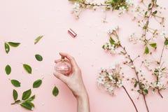 Parfumez l'eau chez la main de la femme avec la fleur de ressort La vue supérieure sur le rose a isolé le fond, flatlay images stock