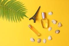 Parfumflessen, een beeldje van de Toren van Eiffel, varenblad op een gele pastelkleurachtergrond zomer minimalism vlak leg stijl royalty-vrije stock afbeeldingen