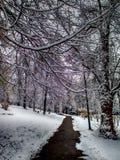 Parh bana en vinterdag Royaltyfri Fotografi