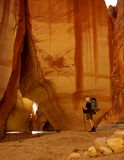 paria каньона Стоковая Фотография RF