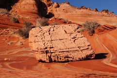 Paria canion-Vermiljoenen Klippenwildernis, Arizona, de V.S. Stock Foto's