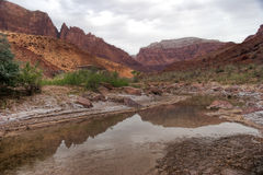 Paria Canyon Wilderness. The remote Paria Canyon Wilderness has the Paria River running through it, making for a spectacular 35 mile backpack through a Royalty Free Stock Photos
