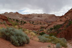 Paria Canyon Wilderness area Stock Image
