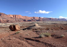 Paria Kanjon-Vermilion klippavildmark, Utah, USA Royaltyfri Fotografi