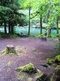 Paridise camp ground Royalty Free Stock Photography