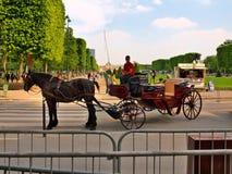 Il cavallo ed il trasporto vicino alla torre Eiffel. Parigi. La Francia. 20 giugno 2012 Immagini Stock