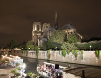 Parijs - Notre-Dame bij nacht Stock Afbeelding