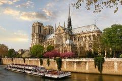 Parijs, Notre Dame met boot op Zegen, Frankrijk royalty-vrije stock afbeeldingen