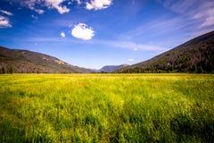 Parika湖,从未夏天自然保护区科罗拉多 免版税库存照片