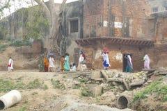 parikrama的录影香客在沃林达文 印度,沃林达文, 2016年11月 库存照片