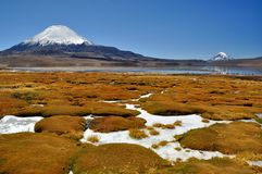 Parinacota Stock Photo