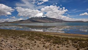 Parinacota - Lago Chungara Images stock