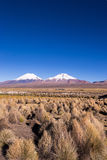 Parinacota and Pomerade volcanos. High Andean landscape in the A. Ndes. High Andean tundra landscape in the mountains of the Andes. The weather Andean Highlands Stock Photos