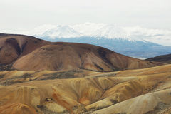 Parinacota and Pomerape viewed from. Cerro Milagro, Lauca national park, Chile Stock Photography