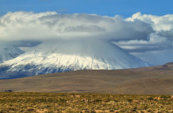 Parinacota and Pomerape volcanoes. View of snow-capped Parinacota volcano, Chile Royalty Free Stock Photo