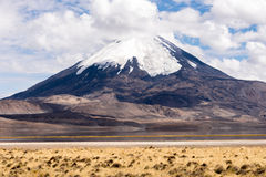 Parinacota volcano and Chungara lake (Chile). Parinacota volcano and Chungara lake, Lauca National Park (Chile Royalty Free Stock Image