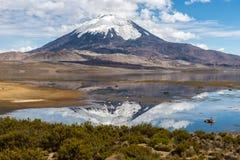 Parinacota volcano and Chungara lake (Chile) Stock Image