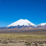Parinacota volcano. High Andean landscape in the Andes. Royalty Free Stock Photo