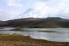 The Parinacota Volcano Stock Photos