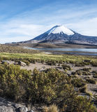 Parinacota Volcano, Lauca, Chile Stock Images