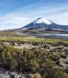 Parinacota Volcano, Lauca, Chile Stock Images