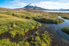 Parinacota Volcano over the Lake Chungara, Chile Royalty Free Stock Photography