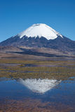 Parinacota Volcano Royalty Free Stock Image