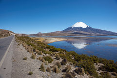 Parinacota Volcano. Snow capped Parinacota Volcano, 6,324m high, reflected in Lake Chungara in the Altiplano of northern Chile Stock Photography