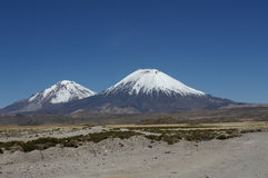 Parinacota Vulcano Stock Images