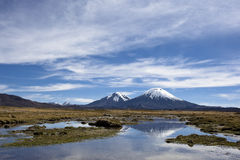 Parinacota Vulkan-Kegel in Nacional Parque Lauca, Chile Stockbilder