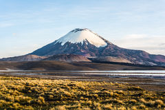 Parinacotavulkaan, Meer Chungara, Chili Royalty-vrije Stock Foto's