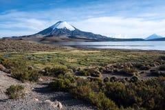 Parinacotavulkaan in Meer Chungara, Chili wordt weerspiegeld dat Royalty-vrije Stock Foto