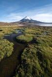 Parinacotavulkaan in Meer Chungara, Chili wordt weerspiegeld dat Stock Fotografie