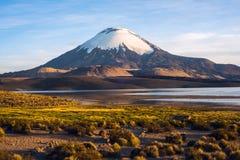 Parinacotavulkaan in Meer Chungara, Chili wordt weerspiegeld dat Royalty-vrije Stock Afbeeldingen