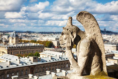Paris aerial view with Chimera Royalty Free Stock Photos