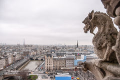 Paris aerial view with Chimera of Notre Dame royalty free stock photos