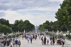 Paris august trädgård 18,2013-Tuilleries Arkivbilder
