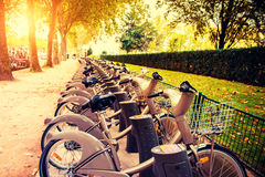 Paris bikes Royalty Free Stock Photography