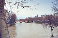 Paris, the bridge over the river Seine. The trees along the promenade Royalty Free Stock Photo