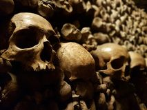 Paris Catacombs. Atmospheric Skulls from the Paris Catacombs in France Stock Image