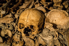 Paris Catacombs Skull. Closeup of a skull from inside the Paris Catacombs Stock Image