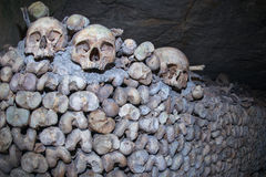Paris Catacombs Skulls and bones Royalty Free Stock Photos