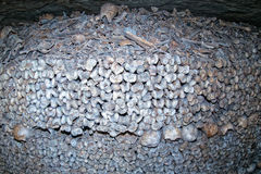 Paris Catacombs Skulls and bones Royalty Free Stock Image