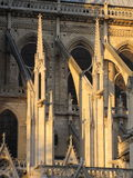Paris cathedral detail Stock Images