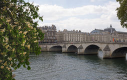 In Paris chestnuts are blooming. View of the Royal Bridge Stock Photography